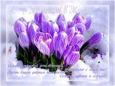 Картинки по запросу 8 марта