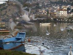 Η ομορφιά των εποχών στη λίμνη της Καστοριάς Travelling, Painting, Art, Art Background, Painting Art, Kunst, Paintings, Gcse Art