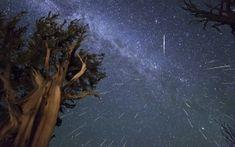 Preview wallpaper meteors, perseids, bristlecone, meteor shower