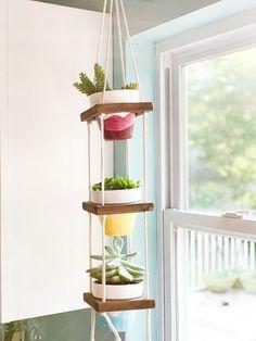 Window Shelf For Plants, Indoor Plant Shelves, Kitchen Window Shelves, Indoor Window Plants, Shelf Above Window, Dorm Shelves, Garden Shelves, Window Planters, Room With Plants