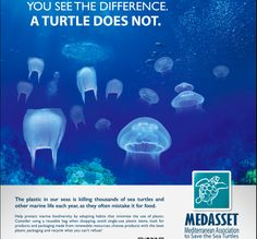 plastic pollution posters ideas - Google Search