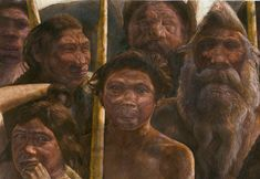 Baffling 400,000-Year-Old Clue to Human Origins. Scientists have found the oldest DNA evidence yet of humans' biological history. But instead of neatly clarifying human evolution, the finding is adding new mysteries. The fossil, found in Spain, had previously seemed to many experts to belong to a forerunner of Neanderthals. But its DNA tells a very different story. It most closely resembles DNA from an enigmatic lineage of humans known as Denisovans. click through