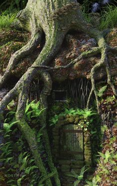 """voiceofnature: """" A Home in the Forest by Bob Nolin """" Fantasy Places, Fantasy World, Beautiful World, Beautiful Places, Fantasy Forest, Dark Forest, Magical Forest, Nature Aesthetic, Fantasy Landscape"""