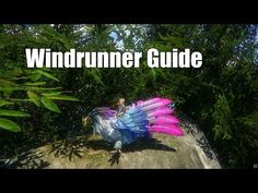 Flimflam's Riders Of Icarus Windrunner Taming Video Guide - http://freetoplaymmorpgs.com/riders-of-icarus-online/flimflams-riders-of-icarus-windrunner-taming-video-guide