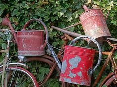 vignette design: Rustic Gardens: A Feast for the Senses - love these colorful old watering cans ~sandra de~Amaranthus~