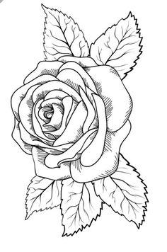 rose à colorier - Yahoo Search Results Image Search Results Rose Drawing Tattoo, Tattoo Drawings, Art Drawings, Rose Coloring Pages, Coloring Books, Embroidery Patterns, Hand Embroidery, Rose Stencil, Schrift Tattoos