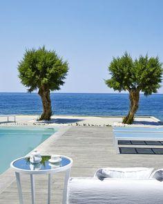 Das #Grecotel White Palace auf #Rhodos ist ein #Luxushotel, wie es im Buche steht. Wie wäre es, wenn ihr morgens von der Sonne wachgekitzelt werdet, eure Terrassentür öffnet und in den #Pool springt? Grecotel LUX.ME White Palace***** #Griechenland #Kreta #Rethymnon #TUI #PrivatePool #DiscoverYourSmile Private Pool, Palace, Outdoor Decor, Home Decor, Beautiful Hotels, Rhodes, Sun, Decoration Home, Room Decor