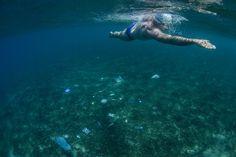 Swimming Through Garbage - NYTimes.com