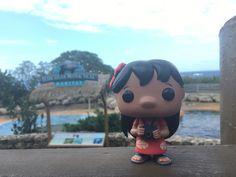 Lilo at Sea Life Park Hawaii