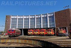 RailPictures.Net Photo: M41 2143 MAV M41 at Székesfehérvár, Hungary by Baki