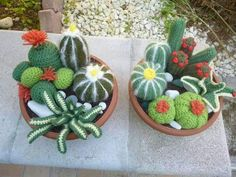 Photo of crocheted cactus. No pattern, but I think I can wing it. Crochet Toys, Knit Crochet, Crochet Fairy, Crochet Cactus, Knitted Flowers, Cactus Y Suculentas, Crochet Projects, Diy And Crafts, Flora