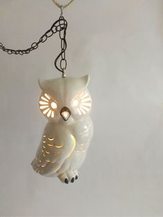 Mid Century Ceramic Owl Pendant Ceiling Light by TimandKimShow // i love this :D