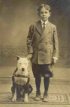 Great old shot of a boy and his Pit Bull