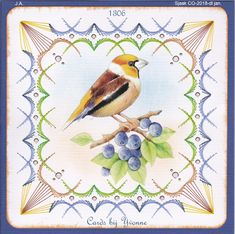 YBB 1306 Vogel