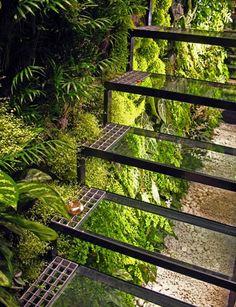 庭のガラスでできた透明な階段