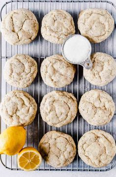 The fluffiest and SOFTEST citrus poppy seed vegan sugar cookies! These are just tart enough, the softest vegan sugar cookie, and rolled in sugar. Best Vegan Cookies, Vegan Sugar Cookies, Vegan Treats, Vegan Snacks, Vegan Foods, Vegan Dessert Recipes, Cookie Recipes, Healthy Desserts, Tart
