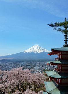 things to do in japan. tokyo train trip. mount fuji views. places to visit in japan. backpacking east asia travel tips on a budget Asia Travel, Japan Travel, Travel Destinations, Travel Tips, Mount Fuji, Train Travel, Osaka, Kyoto, Tokyo