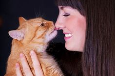 6 Ways to Talk to Your Cat http://www.catster.com/lifestyle/cat-behavior-care-tips-how-to-talk-talking?utm_content=buffer6843e&utm_medium=social&utm_source=pinterest.com&utm_campaign=buffer #cats