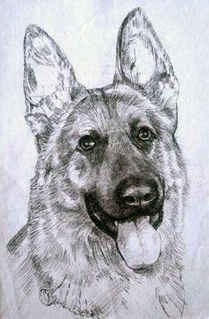 Bob the German Sheperd dog.