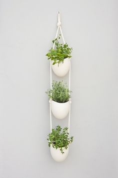 Buy or DIY: 10 Hanging Planters