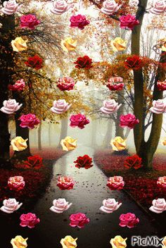 """""""The powerful can kill one, two,hree flowers, but never will hold the sprin. Beautiful Rose Flowers, Flowers Gif, Beautiful Gif, Love Flowers, Good Morning Flowers, Good Morning Images, Morning Gif, Gif Bonito, Gif Photo"""