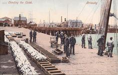 Grimsby Docks 1905 -5 Large.jpg 1,024×657 pixels