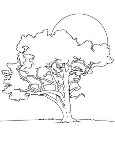 Trees coloring page to print and color Preschool Tree and Leaf