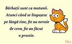 Barbatii sunt ca motanii www. Winnie The Pooh, Disney Characters, Fictional Characters, My Love, Quotes, Ideas, Quotations, Qoutes, Fantasy Characters