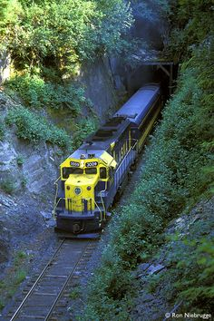 Alaska Railroad. A day of quality time with Brian and the kids. We were privileged to views not seen from the road.