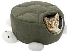 molde-caminha-modelo-tartaruga-para-gatos-e-caes-3-tamanhos_MLB-O-2788579630_062012.jpg (255×198)