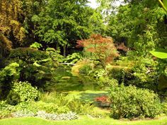 Cuidados del jardín en verano - http://www.jardineriaon.com/cuidados-del-jardin-en-verano.html