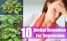 10 Herbs For Depression