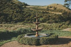 A slice of Italian rural paradise in Waiheke. Waiheke Island, Tuscany, New Zealand, Wedding Day, Outdoor Decor, Paradise, Pi Day Wedding, Marriage Anniversary, Tuscany Italy