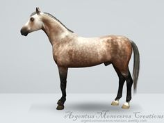 Mod The Sims - Dapple grey horse Sims 3, Sims 4 Pets, Dapple Grey Horses, Dutch Warmblood, Horse Markings, Free Sims, Sims Resource, Sims Mods, Animal Decor