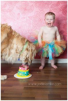 Hailey turns 1 :: Smash The Cake {Penticton Children's Photographer} » Jodie Lemke Photography