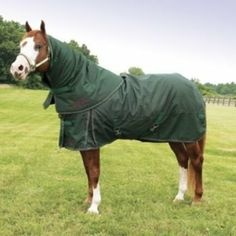 Kensington All Around Combo Turnout Blanket 78In N by Kensington. $89.99. The Kensington(R) Detachable Neck Turnout Blanket offers quality and functionality at a great price! The totally detachable neck warmer gives this turnout added versatility. Take advantage of late season savings and pick up this Kensington(R) turnout today! Blankets are a solid color, with multi-color trim (Navy w/ Red, White & Blue Trim, Black w/ Black, Red & Yellow Trim , Hunter w/ Hunter, Wine...