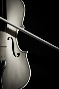 ♫♪ Music ♪♫  instrument Strobist Practice - White Violin black & white photography