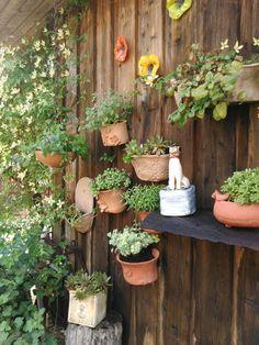 Pfanzgefässe für die Wand