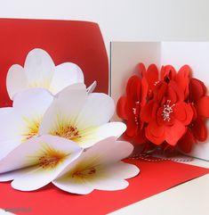 Qui vedi il video Rai della puntata: Idea e realizzazione e foto Maria Rita Macchiavelli Quest'anno a San Valentino i fiori li regala Lei a Lui! Con un max