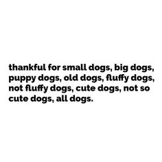 thankful for dogs