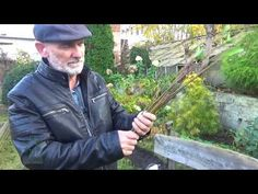 Jak rozmnożyć Forsycję? - YouTube Sad, Gardening, Youtube, Collection, Instagram, Lawn And Garden, Youtubers, Youtube Movies, Horticulture