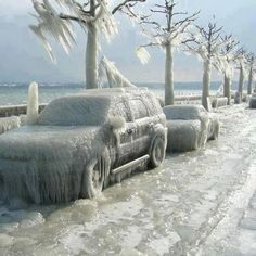 Amazing picture of frozen cars