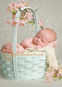newborn portrait in an Easter basket with pink flowers (dogwood?)