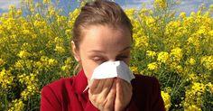 Rinite allergica e antistaminici naturali: la noce di Malabar ti permette di affrontare meglio la primavera e combattere le allergie