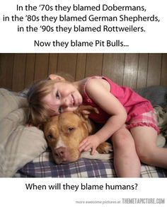 Can't agree more…This pup looks like my RESCUED BABY NALA and she's the sweetest dog I've ever known... these lovely creatures have SOOOO much to offer... Yet another example of how human beings can squash a good thing...