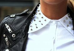 leather & studded collar.