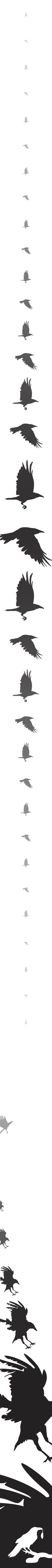 Dark wings. Dark words. #gameofthrones