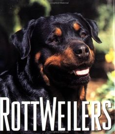 Rottweilers missing-my-maxipoppet