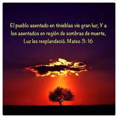 Jesús, la luz del mundo