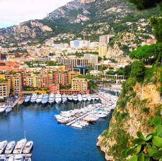 Overlooking the yacht harbor in Monte Carlo, Monaco. An enchanting place steeped in royalty and vast wealth. From my travel pics. . - - www.dermdad.com
